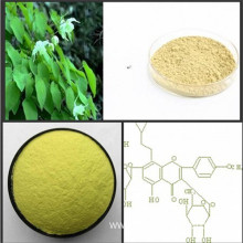 Top quality Icariin goat weed epimedium extract powder